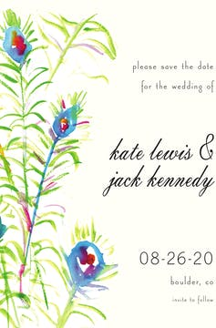 Peacock Wisps Invitation