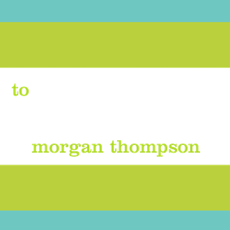 Bold Bands Turquoise/Chartreuse Enclosure