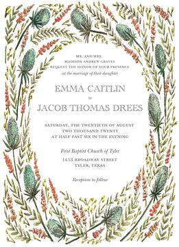 Colored Thistle Invite Invitation